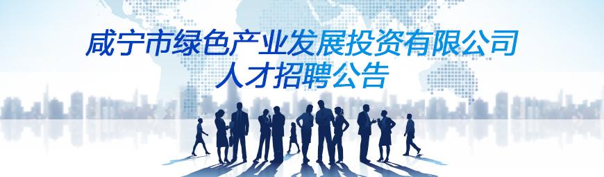 咸宁市绿色产业发展投资有限公司